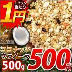 グラノーラ ココナッツグラノーラ 1kg (500g×2) メガ盛 ココナッツ グラノーラ コーンフレーク フルーツグラノーラ シリアル食品 シリアル