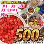 数量限定 アウトレット 訳あり 決算処分 フルーツ 送料無料 フリーズドライストロベリー 65g 苺 イチゴ いちご お菓子 アイス ヨーグルト 500ポイント消化
