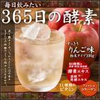 酵素飲料 365日の酵素 りんご風味 100g 粉末タイプ