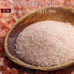 岩塩 食用 ボリビア岩塩 送料無料 紅塩(ピンクソルト) 550g 食用 塩 料理 バス ソルト 入浴剤 業務用