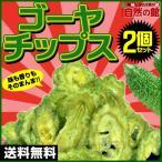ゴーヤ 送料無料 ゴーヤチップス 2個セット(65g×2) うすしお  料理 おつまみ 駄菓子...