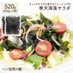 海草 - 寒天 湯戻し簡単メガサイズ 寒天海藻サラダ 2袋セット メガ盛520g(260g×2) まとめ買い 送料無料 熱狂