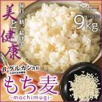 もち麦 送料無料 アメリカ産 館 のもち麦 9kg (450g×20) βグ ルカン 訳あり ポイント消化 ア サイチ まとめ買い ダイエット食 品 大麦 非常食 もちプチ