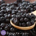 ワイルドブルーベリー 250g 送料無料 アメリカ産 ドライフルーツ チャック付き ポリフェノール豊富 菓子材料 お試し 自然の館● 非常食