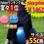腹筋に 効果 空気入れポンプ付属 ブルー ピンク  Gボール