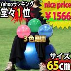 バランスボール 65cm トレーニング