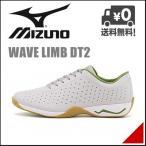 ショッピングウォーキングシューズ ミズノ メンズ ウォーキングシューズ スニーカー ウェーブ リム DT2 3E WAVE LIMB DT2 mizuno B1GE1633 ライトグレー/グリーン