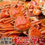 かに 松葉ガニ セコガニ[メス小]3kg 松葉蟹 ボイル ゆでがに 鳥取県産 せこ蟹 セイコ蟹 マツバガニ 日本海ズワイガニ