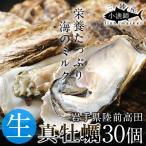 牡蠣 三陸産 生牡蠣 殻付き L 30個 生食用 真牡蠣 陸前高田 気仙沼産生がき 漁師直送
