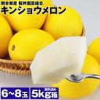 キンショウメロン 6-8玉 2L-LAサイズ 5kg箱満杯詰め 熊本県産 キンショーメロン マクワウリ 瓜 常温便 同梱不可 指定日不可 ギフト
