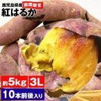 さつまいも 約5kg 紅はるか 鹿児島県産 3Lサイズ 10本前後入り べにはるか 高糖度 焼き芋