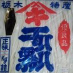 かんぴょう 上 国産(栃木県産) 1Kg×2袋 笠倉