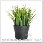 IKEA/イケア FEJKA 人工観葉植物21 cm グラス