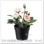 IKEA/イケア FEJKA 人工観葉植物20 cm Rose ピンク