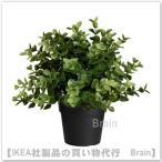 IKEA/イケア FEJKA 人工観葉植物22 cm オレガノ