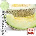 【特価】宮崎県産 アールスメロン 1玉入 約1〜1.5kg 在庫のみ限定
