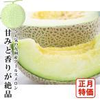 宮崎県産 アールスメロン 2玉入 約2.5〜3kg 在庫のみ限定