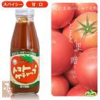荻町 スパイシー トマトケチャップ