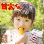 【JAより直送】甘太くん 5kg (12/1出荷開始) 高糖度ブランドさつまいも かんたくん べにはるか かんしょ 生芋