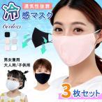 全品30%OFFクーポン配布中 3枚セット 冷感マスク 接触冷感 洗えるマスク 夏用 立体マスク 男女兼用 涼しい 夏マスク アイシクル メール便送無