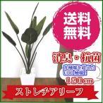 観葉植物 大型 造花 リビング 消臭 抗菌 ストレチア リーフ 120cm 送料無料 フェイクグリーン