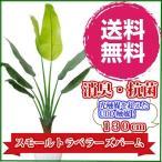 観葉植物 造花 リビング 消臭 抗菌 UDD触媒 スモールトラベラーズパーム 130cm  トラベラーズパーム 送料無料 フェイクグリーン
