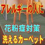 ゴシゴシ洗えるラグカーペット ロボフロアー キレット 140X200cm「送料無料」