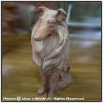 コリー犬H70cm 素焼きテラコッタ製ガーデン動物オブジ