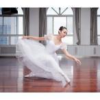 バレエレオタード リトルスワン レオタード ドレス ダンス 女性 ステージ衣装 バレエ形体服 レディースのダンス衣装 舞台衣装 練習用 競技着dm442d3d3d3