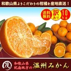 みかん 訳あり 【C級品】 温州 みかん 10kg (箱込約10kg 9kg+保証分500g)約90〜130個 サイズ混合 送料無料 和歌山 温州 蜜柑 旬 果物 フルーツ