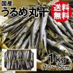 送料無料 うるめ丸干1kg(国産) (うるめいわし/うるめ丸干し/干物)