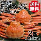 送料無料 ボイルずわい蟹/姿(2匹入/約1.1kg)