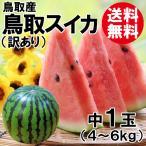 訳あり 鳥取産・鳥取スイカ[北栄スイカ・大栄スイカ]中1玉(4〜6kg)[送料無料]