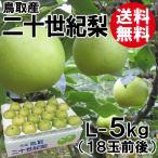 [贈答用]鳥取産・二十世紀梨[20世紀梨]L-5kg(18玉前後)[送料無料]