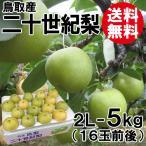 [贈答用]鳥取産・二十世紀梨[20世紀梨]2L-5kg(16玉前後)[送料無料]