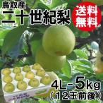 [贈答用]鳥取産・二十世紀梨[20世紀梨]4L-5kg(12玉前後)[送料無料]