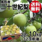 [贈答用]鳥取産・二十世紀梨[20世紀梨]2L-10kg(32玉前後)[送料無料]