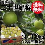 [贈答用]鳥取産・二十世紀梨[20世紀梨]3L-10kg(28玉前後)[送料無料]