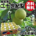 [贈答用]鳥取産・二十世紀梨[20世紀梨]4L-10kg(24玉前後)[送料無料]