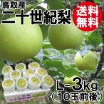 [贈答用]鳥取産・二十世紀梨[20世紀梨]L-3kg(10玉前後)[送料無料]