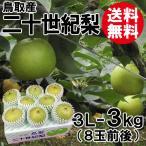[贈答用]鳥取産・二十世紀梨[20世紀梨]3L-3kg(8玉前後)[送料無料]