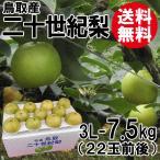 [贈答用]鳥取産・二十世紀梨[20世紀梨]3L-7.5kg(22玉前後)[送料無料]