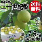 [贈答用]鳥取産・二十世紀梨[20世紀梨]4L-7.5kg(18玉前後)[送料無料]