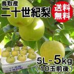 [贈答用]鳥取産・二十世紀梨[20世紀梨]5L-5kg(10玉前後)[送料無料]