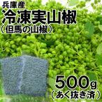 兵庫産・冷凍実山椒(500g前後)(あく抜き済)