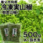 養父市特産・冷凍実山椒(500g前後)[朝倉山椒](あく抜き済)
