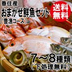 おまかせ鮮魚セット 豊漁コース 7〜8種類 刺身用中心 送料無料 海鮮ギフト 詰め合せ 日本海の鮮魚 鮮魚ボックス 鮮魚BOX 下処理 お取り寄せ 産地直送 ギフト