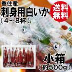 香住産・刺身用白いか[小箱](8杯前後)(剣先イカ/ケンサキイカ)