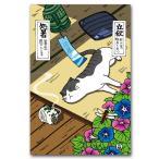ほのぼの猫のポストカード 『8月 葉月』 二十四節気 絵葉書