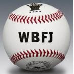ショッピング安い ミズノ 硬式野球ボール 女子野球試合球 1BJBH13000 1ダース